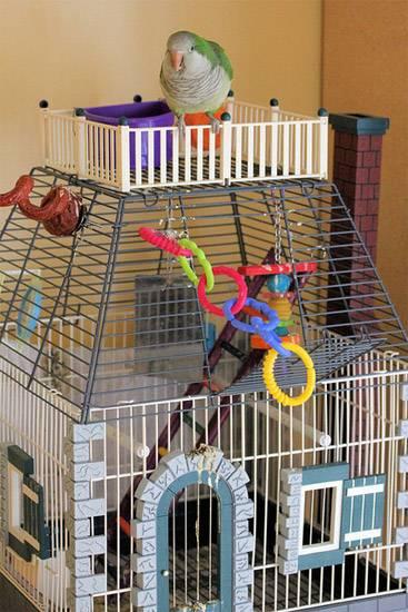 Клетка с игрушками для попугайчика