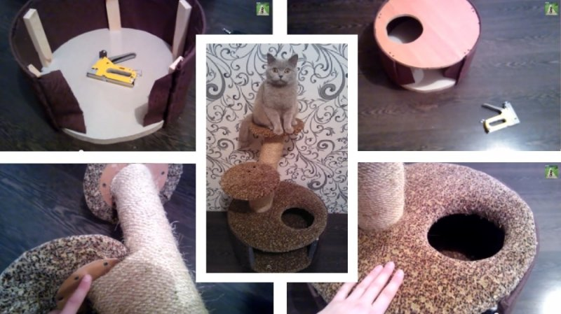 Комплекс для кота своими руками
