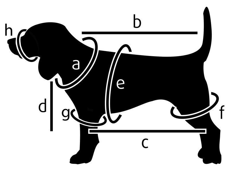 Как своими руками сшить комбинезон для собаки