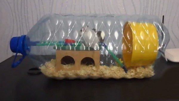 Дом для хомяка из картона в пластиковой бутылке