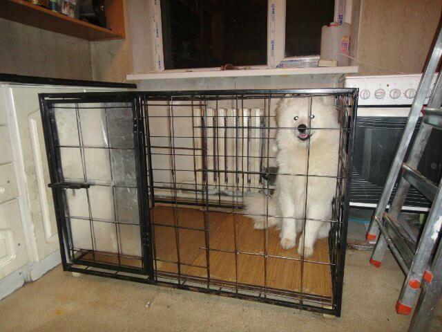 Клетка для собаки своими руками